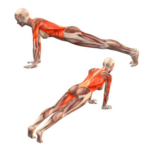 postura de la plancha